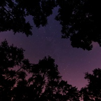 Stars and Grace: I